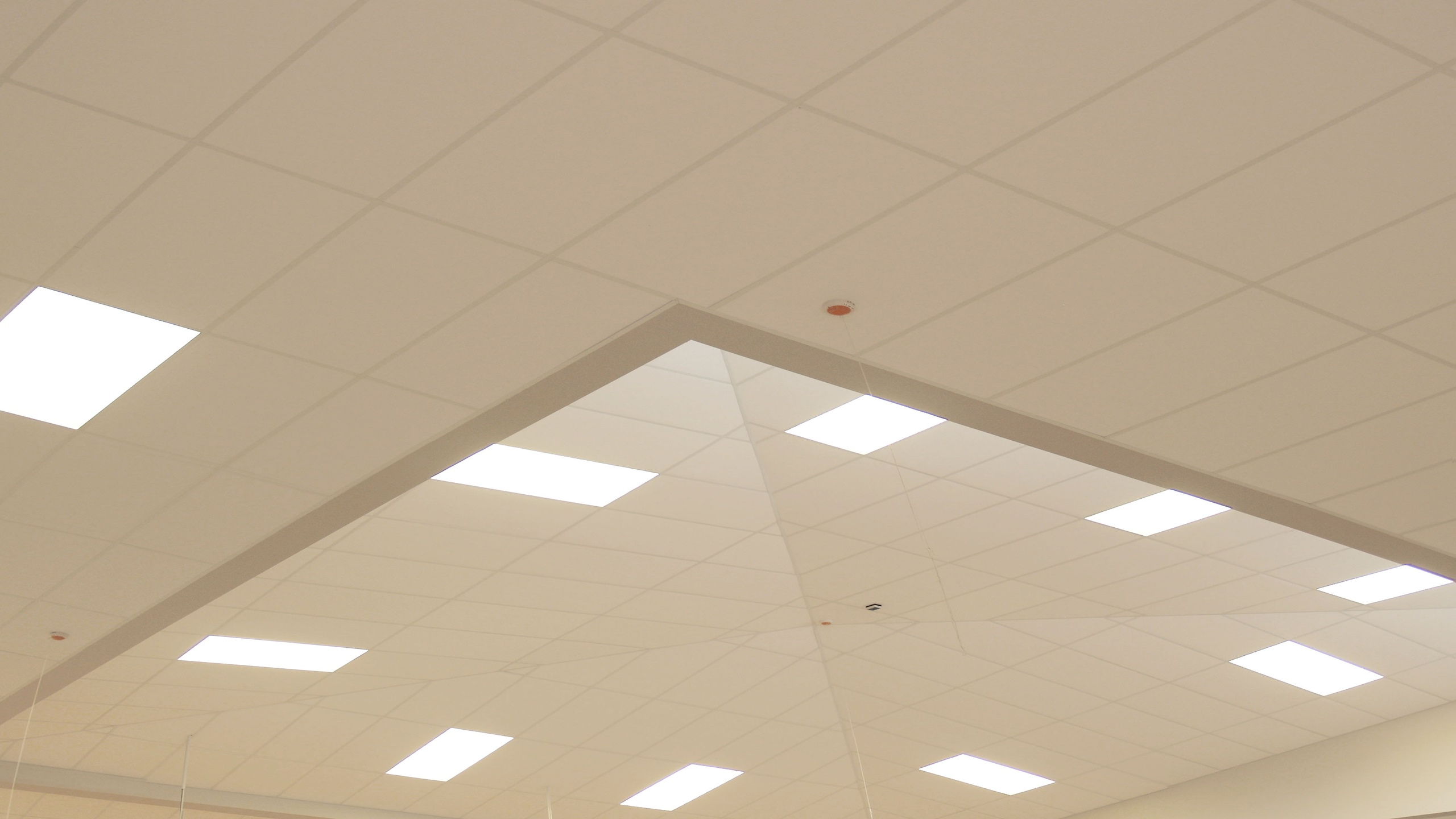 Balmoral School Auditorium showing detail of Diffusion in conjunction with Classroom 60/40 ceiling panels