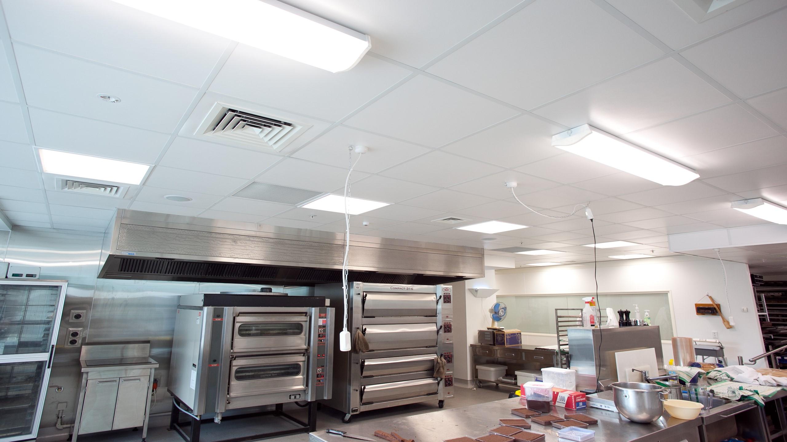 Goodman Feilding food tech training room showing Triton Hygiene installed into a grid & tile system.