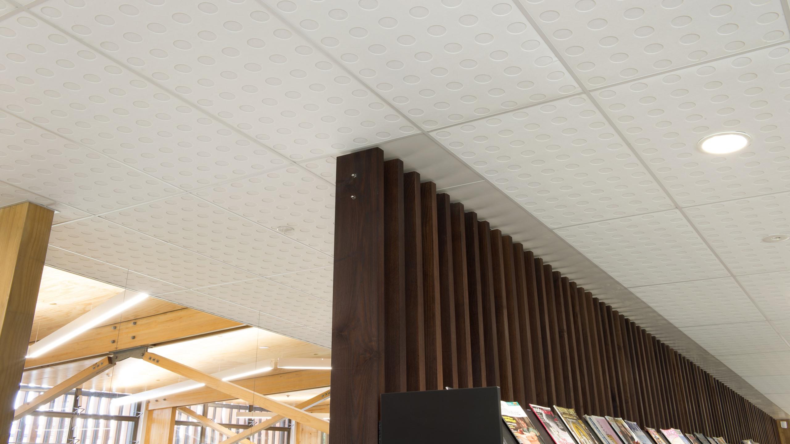 Devonport Library - Sonatex P55-100